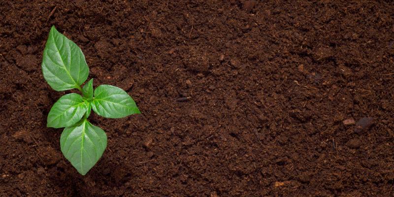 Why Do I Need A Soil Survey?